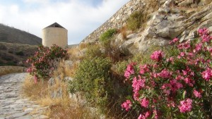 moulin_a_syros_l2